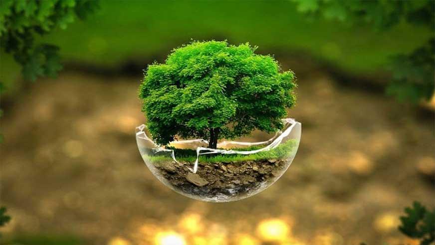 فیزیک محیط زیست