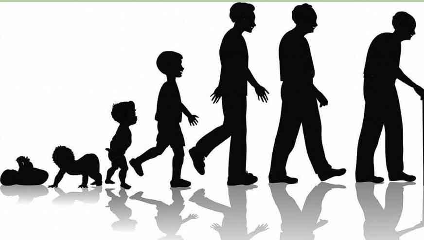 رشد و تکامل از تولد تا بلوغ